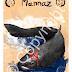 """MANNAZ - """"Aos Mestres das Runas"""""""