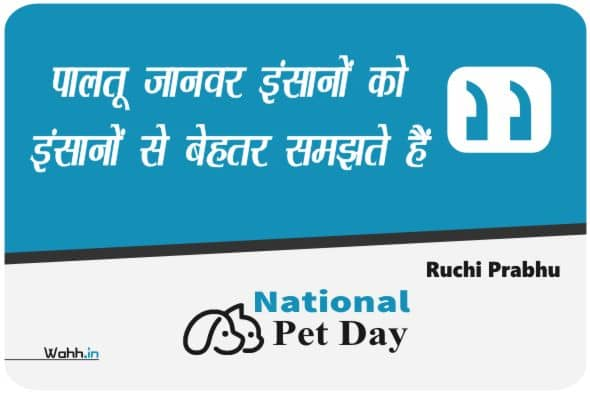 Pet Day Quotes In Hindi