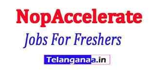 NopAccelerate Recruitment Jobs For Freshers Apply