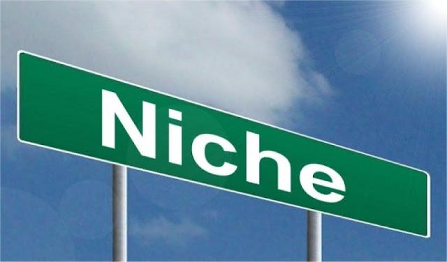 دليل كيفية ايجاد واختيار النيتش المربح 8 نيتشات مربحة لسنة 2021