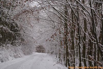 Nagymező tél hó