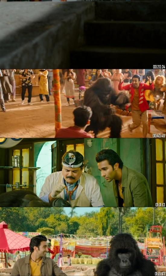 Hello Charlie 2021 Hindi 720p 480p pDVDRip x264 Full Movie