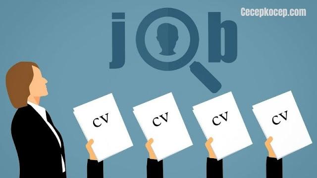 Cara Membuat CV Lamaran Kerja
