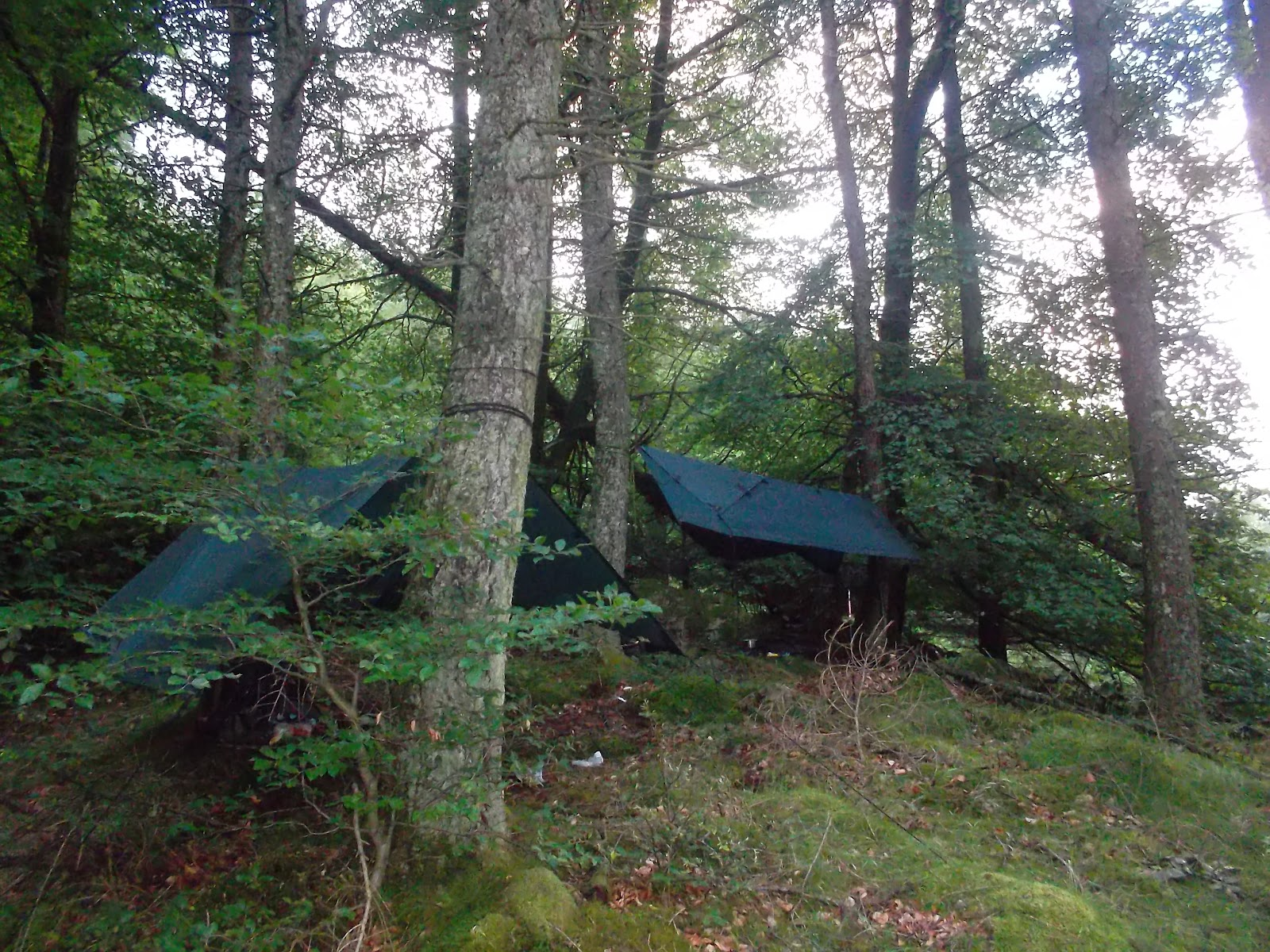 the secret camper: Wild camping and hiking for 2 days and ...