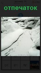 на снегу оставлены несколько отпечатков