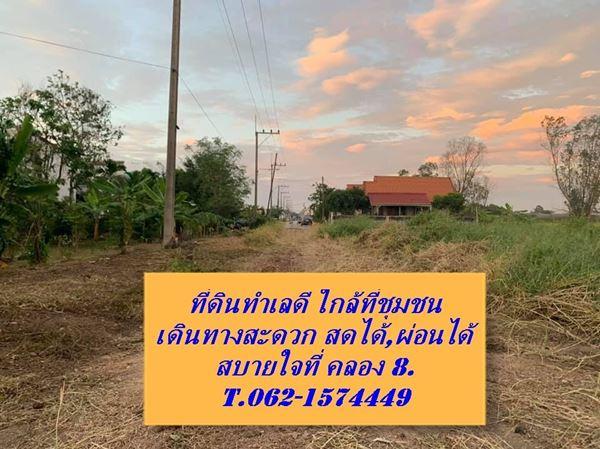 ที่ดินปลูกบ้านงามๆเขตชุมชน สดได้,ผ่อนได้ T.062-1574449 รังสิต คลอง 8 ธัญบุรี ปทุมธานี