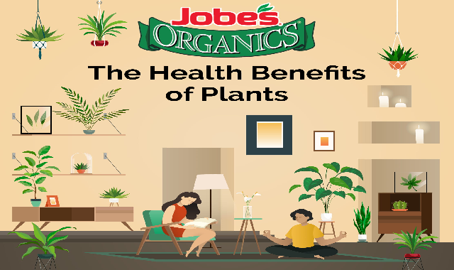 The Health Benefits of Plants #infographic
