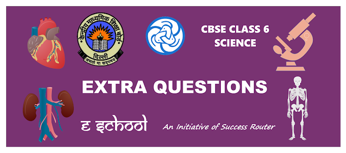 CBSE Class 6 Science Objective Type Questions Chapter 3 Fibre to Fabric