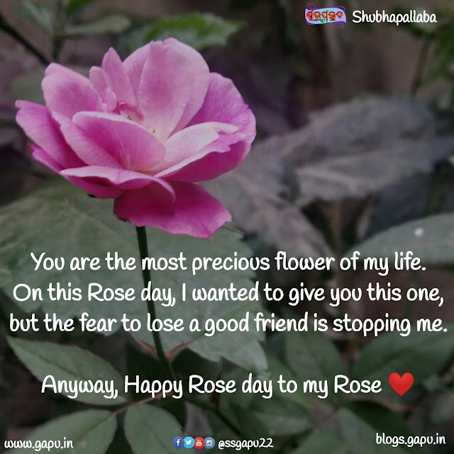 Happy Rose Day my Rose