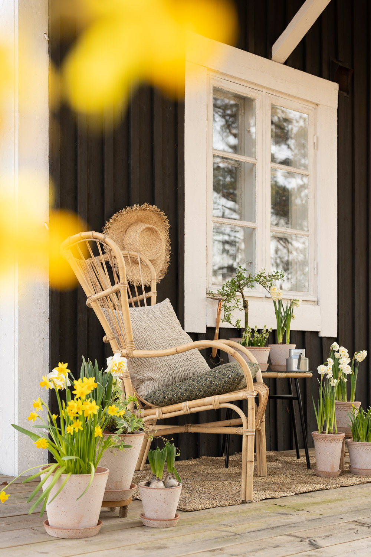 patio, kevät