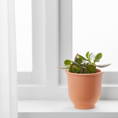 BRYTÄRT Plant pot