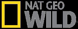 Nat Geo Wild +1 Italia TV frequency on Hotbird