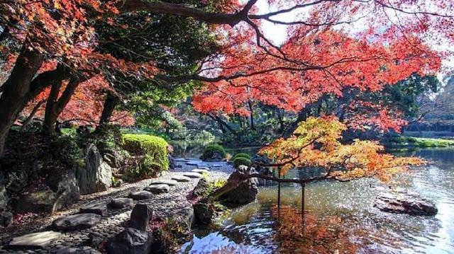 jardins Koishikawa Korakuen toquio