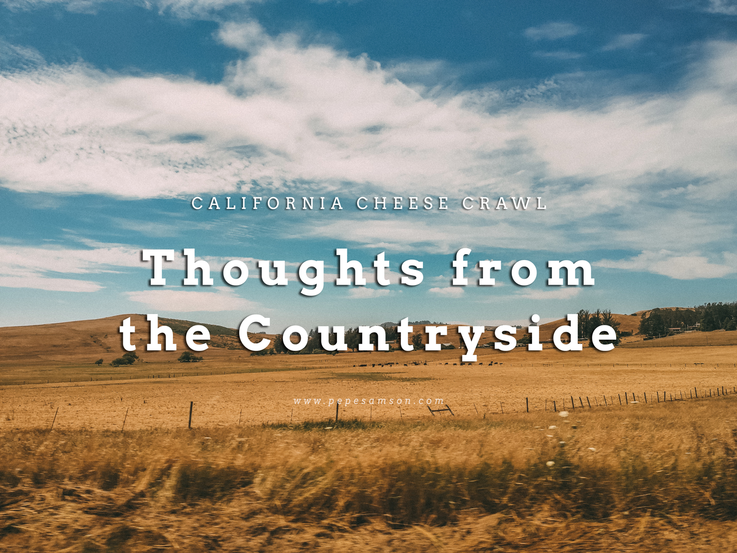 California Cheese Crawl: What I Learned from Visiting Three of California's Best Dairy Farms