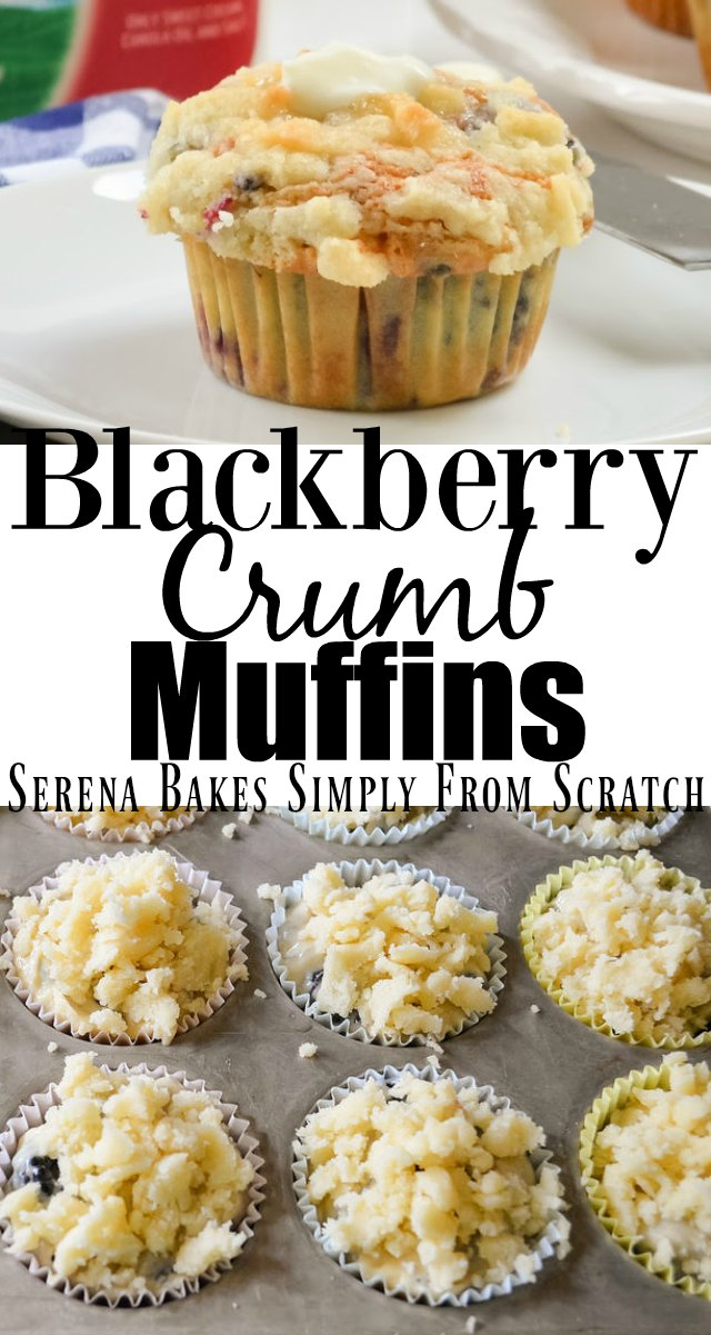 Blackberry Crumb Muffins recipe are the best of a blackberry muffin with a sweet coffee cake crumb from Serena Bakes Simply From Scratch.