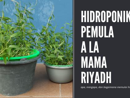 Hidroponik Pemula a la Mama Riyadh