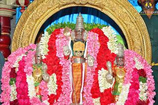 Sandhana Kaapu Tiruttani Murugan Temple