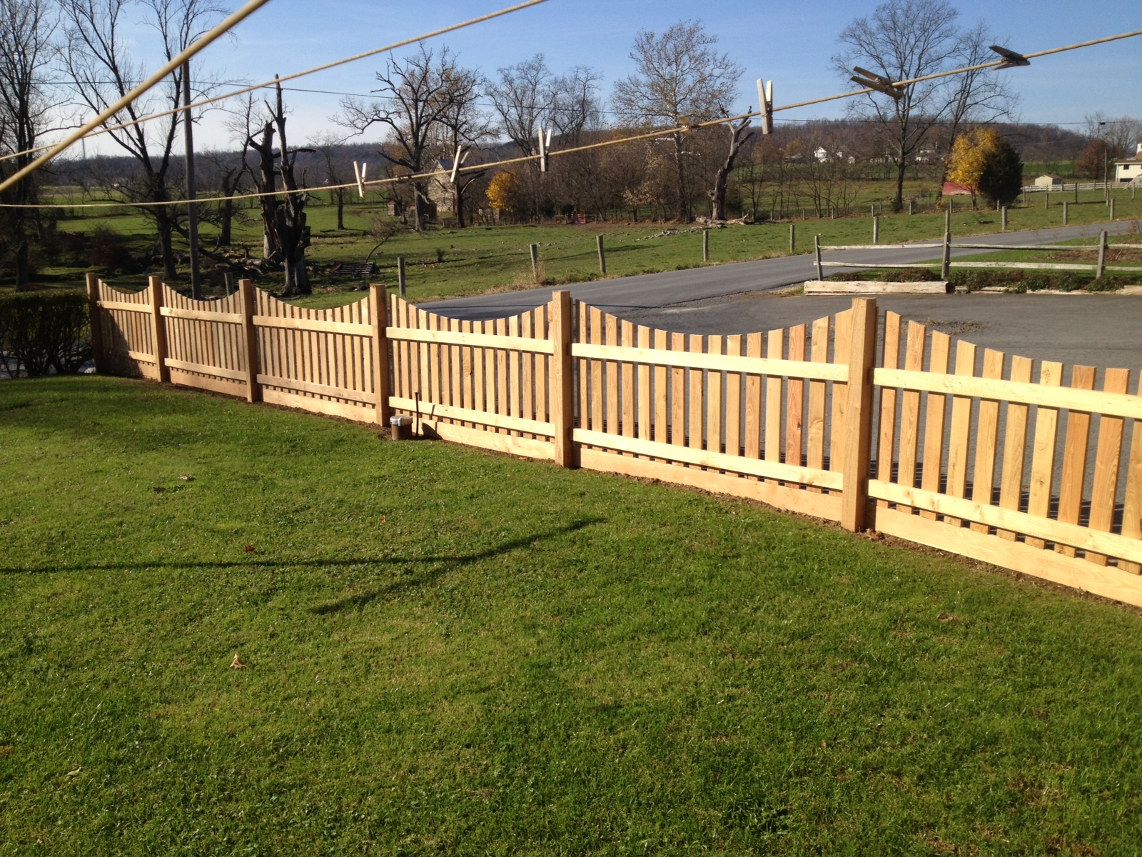 Giving New Life to Trees: Black Locust Decorative Fence