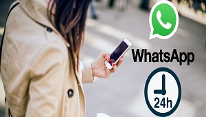 Cara Membuat Status WhatsApp Selalu Online