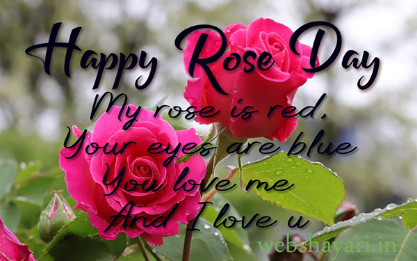 latest rose day  images with quotes for wife