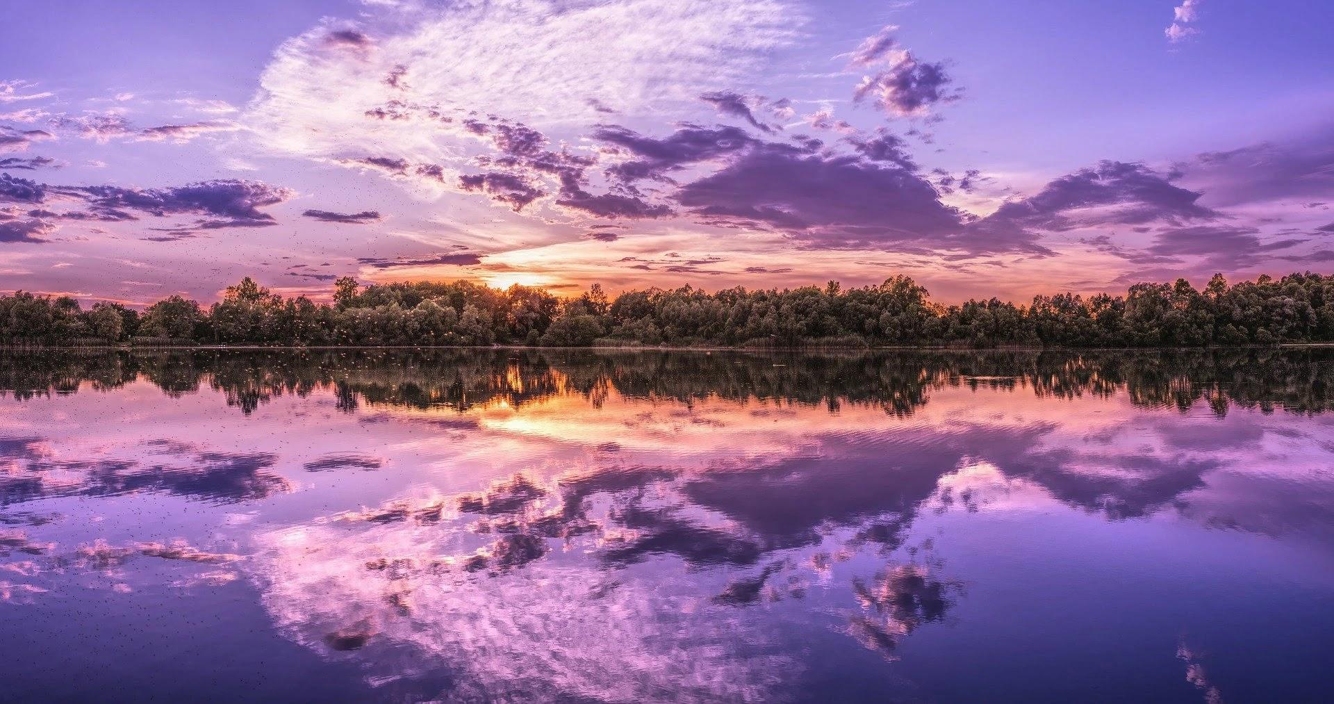 صورة بحيرة واشجار خضراء