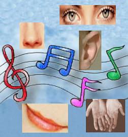 Musica y organos de los sentidos