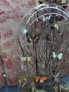 Decoración con mariposas para navidad