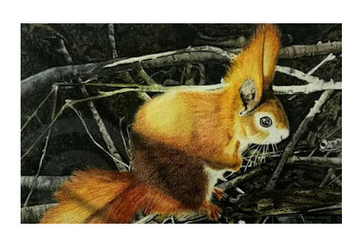 detailed painting of a red squirrel