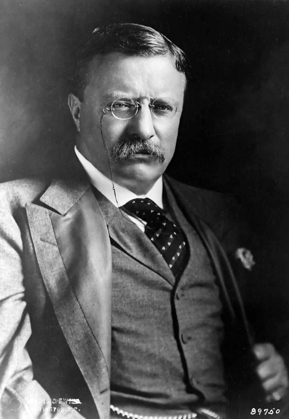 Satisfying Retirement: Teddy Roosevelt Nails It Theodore Roosevelt