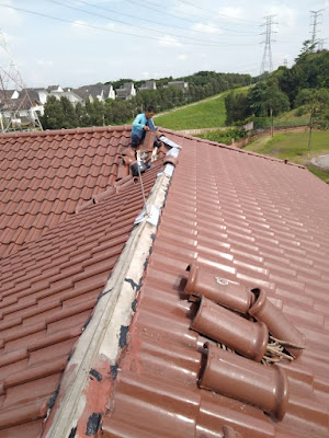 Mr roof ridge repair