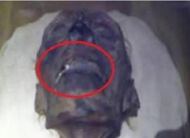 ما سر السائل الأبيض الذي يخرج من فم الفرعون منذ الاف السنين؟