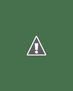 Priscilla Morales Bio