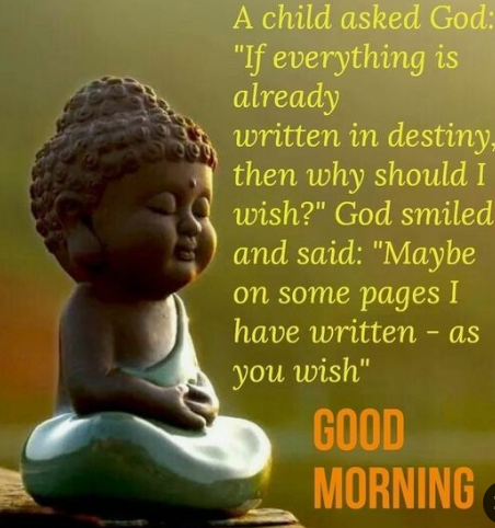 Good Morning Budha Quotes with Image