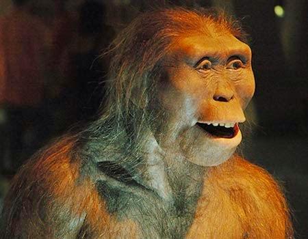 l'australopiteco per la scuola primaria