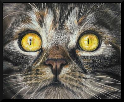 portrait animalier, chat, pastel