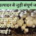 मशरुम उत्पादन का व्यापार कैसे शुरू करें - How to start Mushroom Farming Business