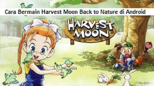 Cara Bermain Harvest Moon Back to Nature di Android