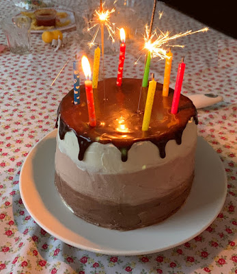 gluten free chocolate coconut birthday cake