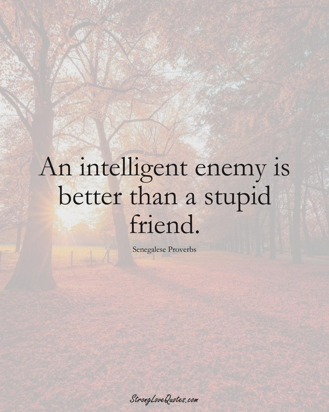 An intelligent enemy is better than a stupid friend. (Senegalese Sayings);  #AfricanSayings