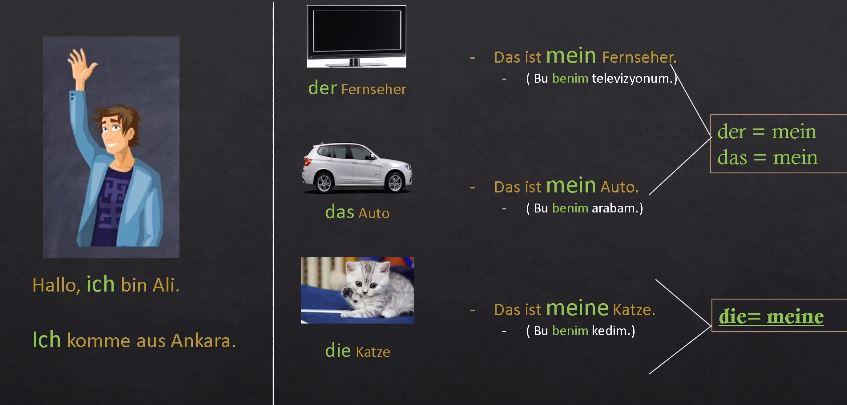 Almanca İyelik Zamirleri Öğren