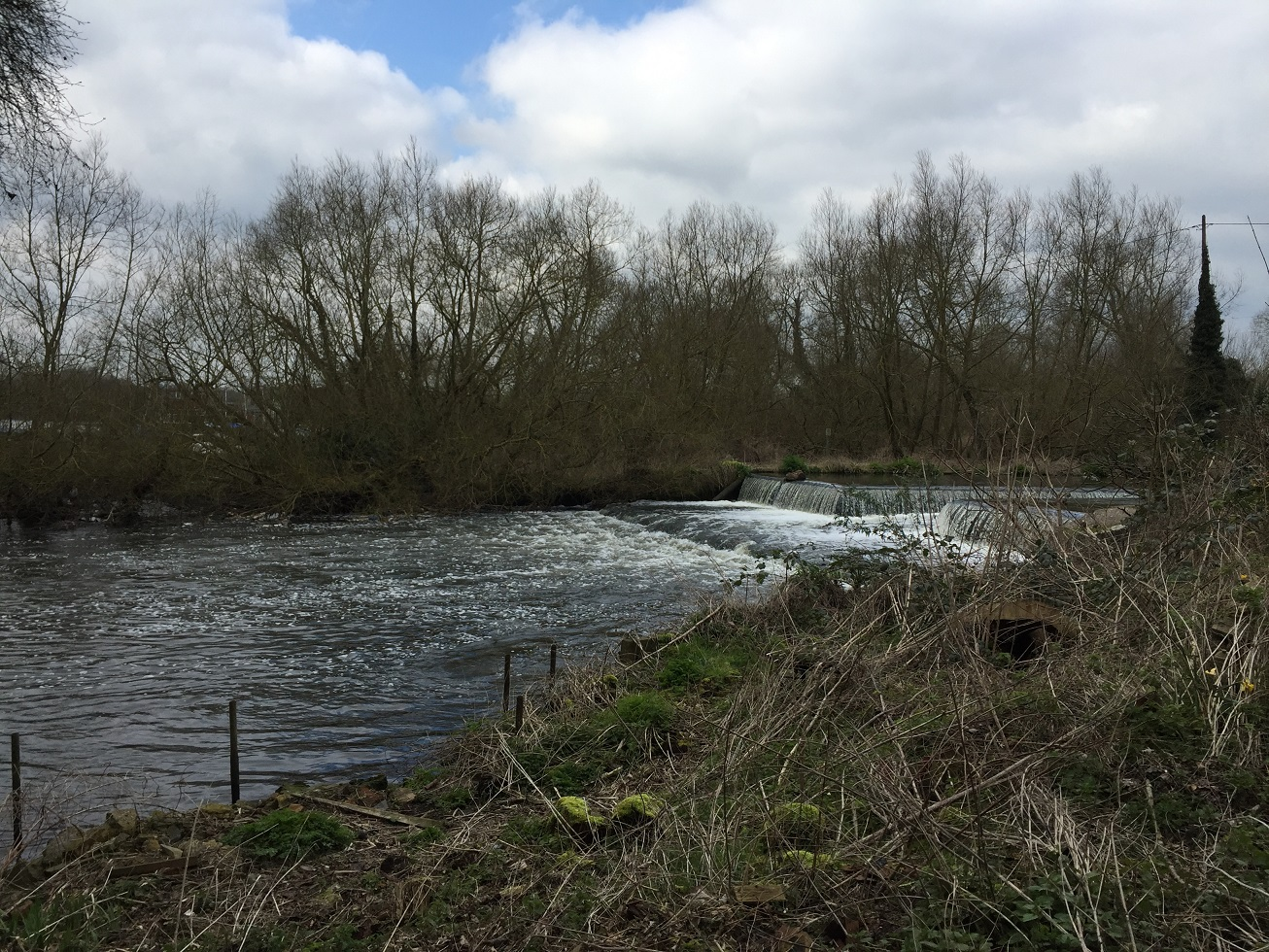 River Colne, near Harefield, on the London Loop Recreational Walk