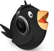 Download Songbird 2017 Offline Installer