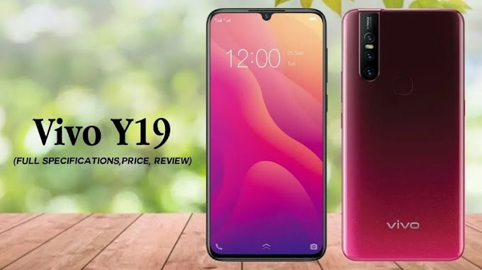 भारत में लॉन्च Vivo Y19, कीमत और फीचर्स जानें