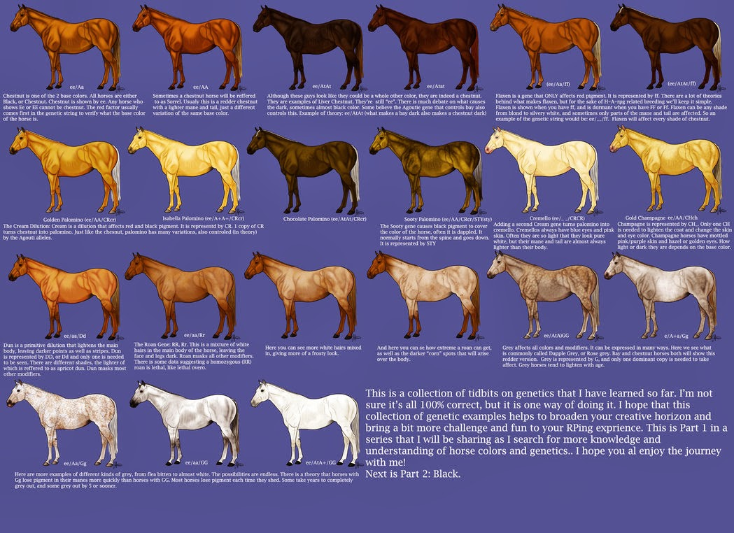 Iowa Grognard: Horse Color Charts