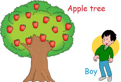 cerita cingkat narrative tenata anak dan pohon apple bahasa Inggris