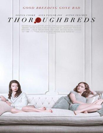 Thoroughbreds (2017) English 720p WEBRip