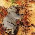 Hallan once elefantes muertos en un parque natural de Botsuana
