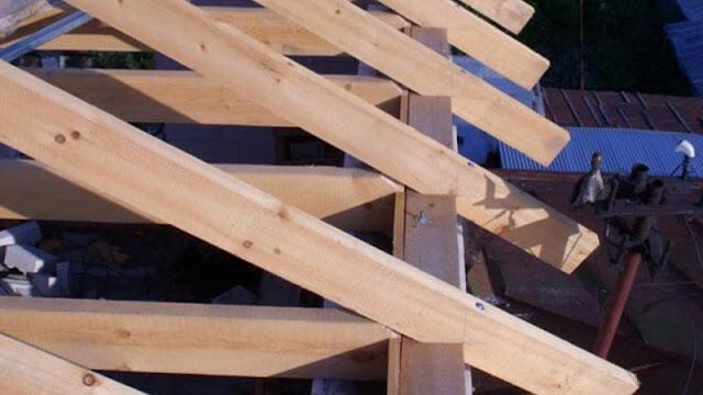 manfaat kayu kamper untuk bahan baku kontruksi