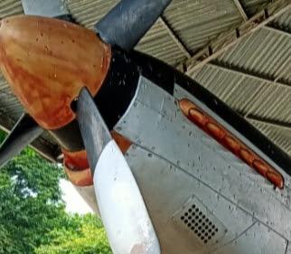 Bangkai pesawat Mustang P_51