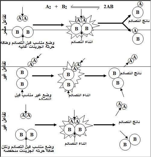 سرعة التفاعلات الكيميائية و الاتزان الكيميائي ملخص كمياء ثاني ثانوي اليمن الوحدة السابعة 1 ملخصات الثانويه العامه في اليمن